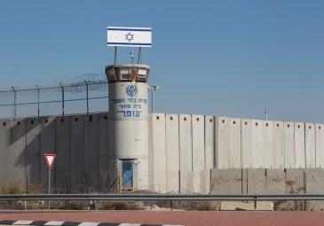 257 أسيرًا من غزة يقبعون في سجون الاحتلال