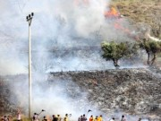 """اندلاع حريق في دفيئات الطماطم بـ""""أشكول"""" بفعل بالونات حارقة أطلقت من غزة"""
