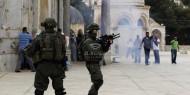 قوات الاحتلال تصيب عدداً من المرابطين وتمنع إقامة صلاة المغرب