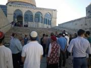 """اغلاق باب المغاربة عقب اقتحام (39) مستوطناً لساحات """"المسجد الأقصى"""""""