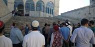 أكثر من 140 مستوطنًا يقتحمون باحات المسجد الأقصى المبارك