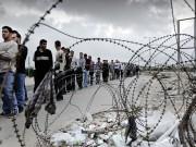 تفاصيل جديدة حول عمل سكان غزة بالداخل المحتل: 5 آلاف عامل بمرتب 7 آلاف شيقل