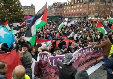 القضاء الأمريكي يحكم بإخفاء معلومات المتضامنين مع فلسطين عن منظمة إسرائيلية