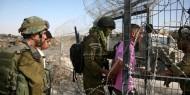 الاحتلال يعتقل شابان بزعم محاولة اجتيار السياج الفاصل