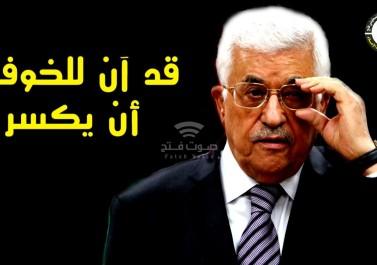 """""""ملاك السلام"""".. 6000 dislike"""""""" مقابل 245 like"""""""