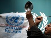 """بيان مهم صادر عن وكالة """"أونروا"""" في غزة"""