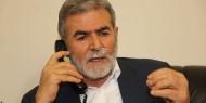 زياد النخالة يهدد الاحتلال بالرد بقوة على أي عدوان ضد قطاع غزة
