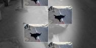 """بالفيديو..""""سماح مبارك"""" غزاوية تُزف محملة على الأكتاف برصاصٍ اسرائيلي في القدس"""