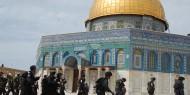القدس: شرطة الاحتلال تقتحم المسجد الأقصى وتنتشر عند بواباته