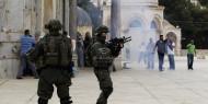 """الأردن انتهاكات الاحتلال في """"الأقصى""""تستفز مشاعر المسلمين"""