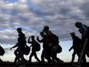 فيديو يظهر معاناة الغزيين خلال هجرتهم إلى أوروبا