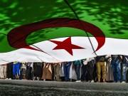 الجزائر يعتقل شبكة كانت تخطط لتنفيذ عمل مسلح داخل البلاد
