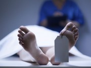 القاتل اعترف: تفاصيل صادمة حول مقتل طفل بعمر اعلامين في رفح