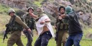 مستوطنون يتجمون برفقة قوات الاحتلال شرق قلقيلية