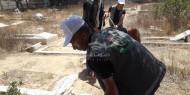 بالصور.. تيار الإصلاح يشارك في تنظيف مقبرة بيت لاهيا