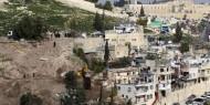 """إبطال مخطط لإقامة مستوطنة في """"بطن الهوى"""" بسلوان"""