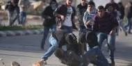 اصابة 5 مواطنين في اقتحام قوات الاحتلال لقلقيلية