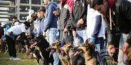 شرطة حماس تمنع اصطحاب الكلاب إلى الأماكن العامة في غزة!
