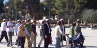 """""""شؤون القدس"""": مطلوب من الأمة القيام بواجباتها تجاه الأقصى"""