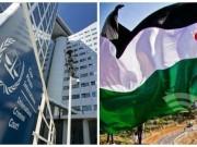 حشد: قرار الجنائية الدولية إرجاء دراسة طلب المدعية العامة مخيب لآمال الفلسطينيين