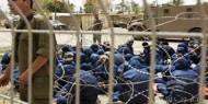 بالصور :  انتفاضة  تنطلق من  سجن عوفر بعد هجمة الاحتلال الشرسة ضد الاسرى
